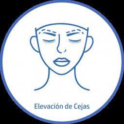 Cirugía plastica Facial elevacion de cejas